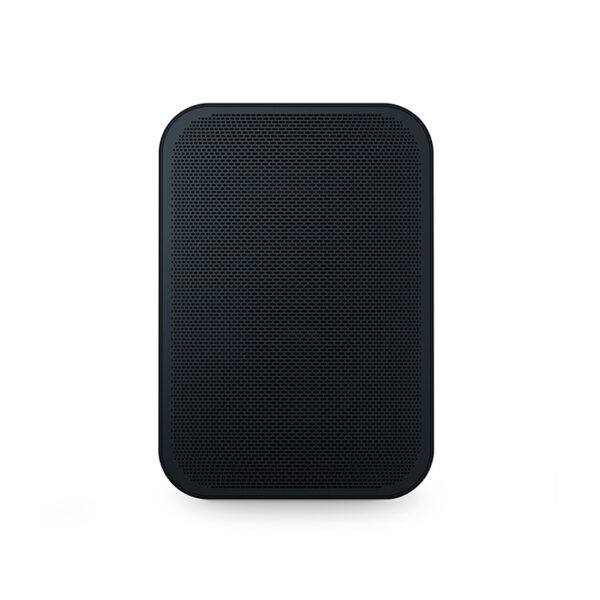 Bluesound Pulse Flex 2i Wireless Airplay 2 Speaker